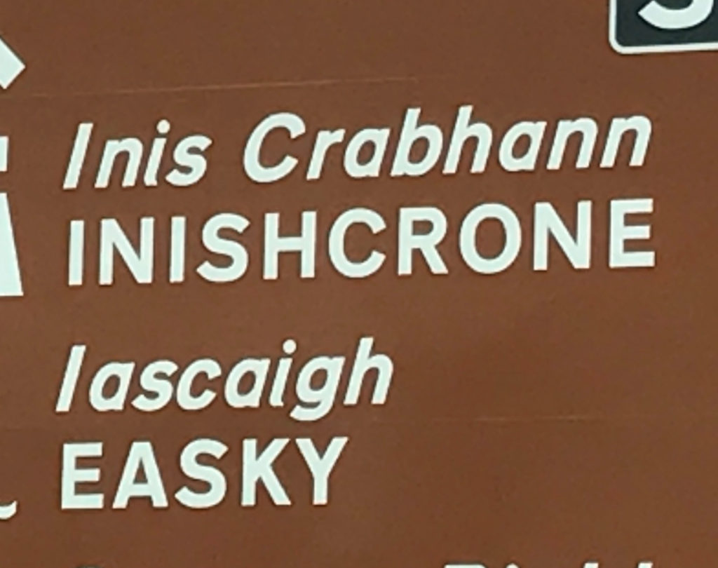 Enniscrone Agricultural Show to be launched this evening - Ocean FM