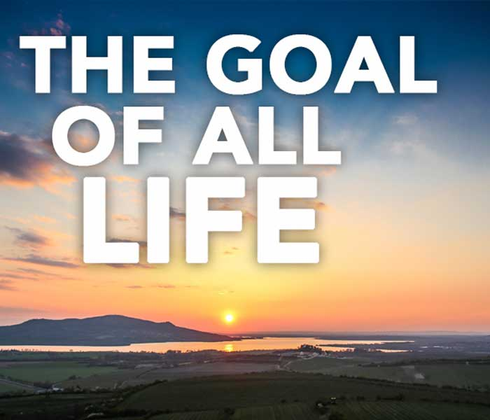 Documentary Series - The goal of all life