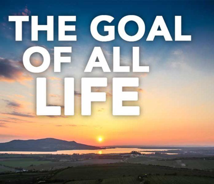 The Goal Of All Life Episodes 1 4 Ocean Fm