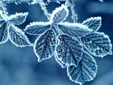Temperatures set to plummet to -7 in Northwest