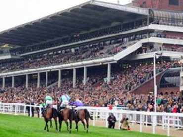 Ban Horse Racing debate after death of two horses at Cheltenham